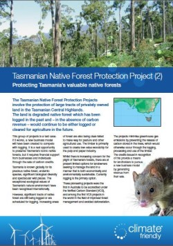 carbon-offsetting-tasmanian-native-forest